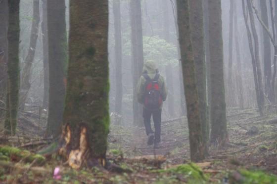 s-0611-竹内霧の中へ-_MG_2521